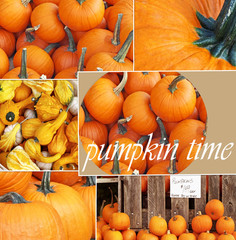 Collage of Pumpkin photos ideal for Thanksgiving