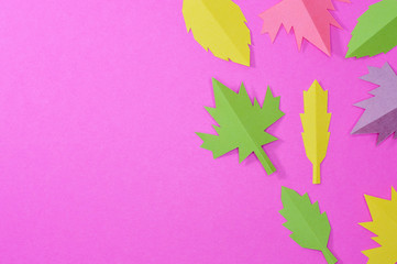 pink template with leaves right side