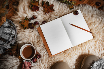 Relaxing autumn day at home with coffee and blank notebook for copyspace in warm coziness scandinavian hygge style, POV first person look which is female