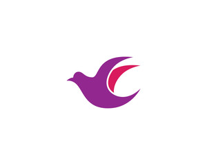 Hummingbird Logo Template