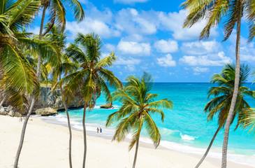 Bottom Bay, Barbados - Paradise beach on the Caribbean island of Barbados. Tropical coast with...