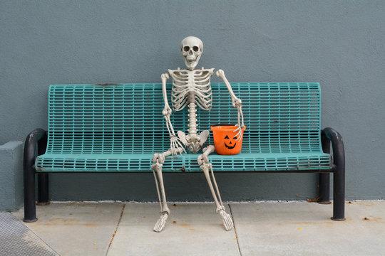 Halloween Skeleton sitting on bench with jack o'lantern trick or treat bucket