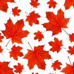 autumn seamless background pattern