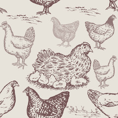 Farm animals pattern. Hand drawn chicken farm seamless pattern in vintage style, packaging farm products chicken eggs hand drawn vector