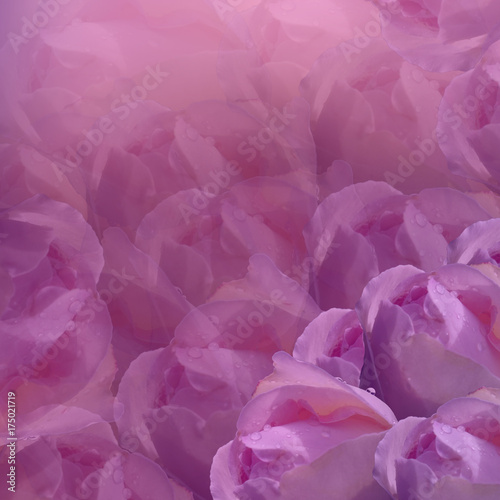 Floral background flowers on pink background light pink flowers floral background flowers on pink background light pink flowers roses floral collage mightylinksfo
