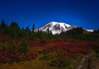 Mount Rainier on a sunny autumn day