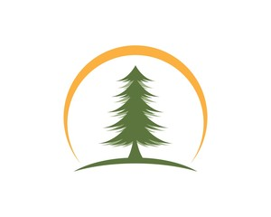 Cedar tree Logo template vector icon illustration design