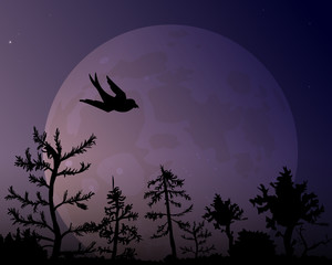 The forest on the background of the moon and silhouette of bird.