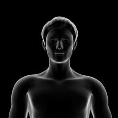 Human Body, Man