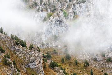 Paisaje de montaña con sabinas albares y tejos. Juniperus thurifera. Taxus baccata.