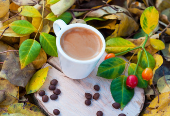 white cup with espresso on hemp among fallen autumn leaves