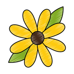 beauty sunflower isolated icon