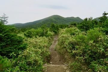 八甲田ゴールドライン