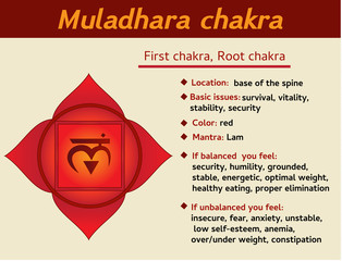 Muladhara chakra infographic. First, root chakra symbol description and features. Information for kundalini yoga