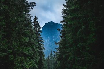 Tatra Mountains I