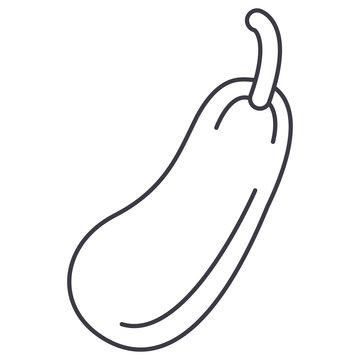 zucchini vector line icon, sign, illustration on white background, editable strokes