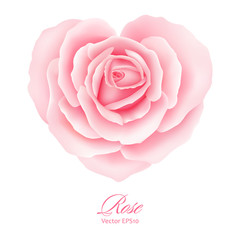 Rose flower in heart shape. Vector illustration