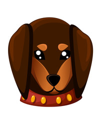 Cute domestic dog dachshund breed on the white background. Vector illustration cartoon puppy sitting of cute little dog wearing collar. Dog friend. Vector illustration. Isolated on white background