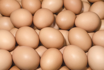 Brown eggs background
