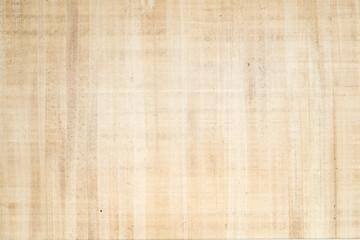 Antique papyrus as background, paper texture