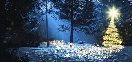Weihnachtszauber nachts im Wald bei Mondlicht