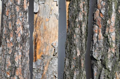 Holzbretter Mit Rinde holzbretter mit rinde stockfotos und lizenzfreie bilder auf fotolia
