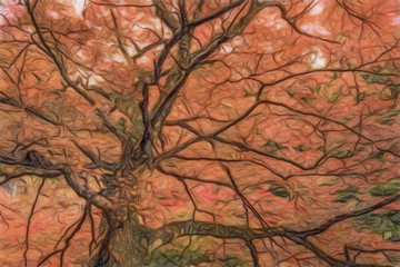Colored Pencil Drawing; Fall Color Leaves at Yoro Waterfall in Gifu, Japan, November, 2016