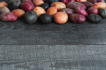 Wooden background with mix of fresh colorful potatoes