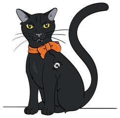 A Black Cat with an orange bow and spider-like bell sitting.