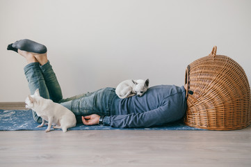 Unknown male lying on yoga mat. Head in wicker doghouse. Man in fashionable clothing. Weird odd bizarre strange unusual headless guy. Little mexican chihuahua puppies sleeping at home. Homeless dogs.