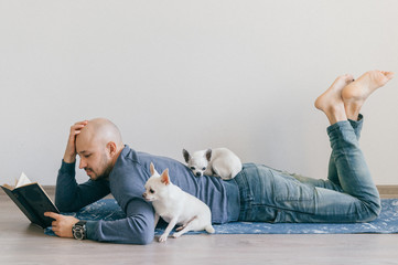 Adult bald man in fashionable clothing lying on yoga mat. Young guy reading book. Two white male chihuahua puppies at home. Pet sleeping with owner. Little lovely furry dog sitting on wooden floor.