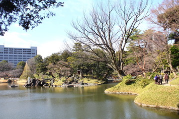 Koishikawa-korakuen at Bunkyo-city,Tokyo Japan / It is a garden completed in 1629 in the early Edo period. Scenery such as lakes, mountains, rivers and rural areas is skillfully expressed.