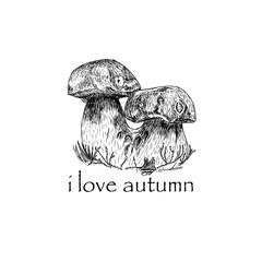 Mushroom hand drawn sketch vector illustration on the transparent background