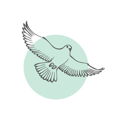Sketch bird. Vector illustration