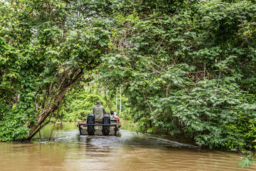 Tourist boat passing through the jungle