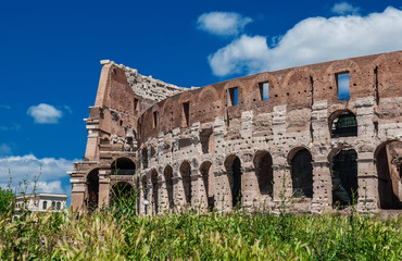 Coliseum arches with green grass in Rome