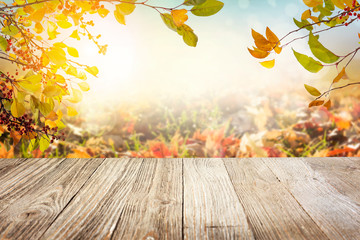 Wooden table with autumn leaves background Wall mural