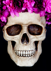 Skull with a wreath of pink flower