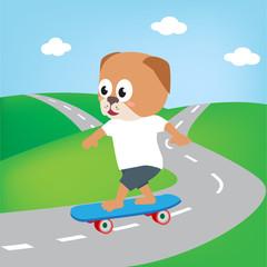 dog playing skate board, vector cartoon illustration