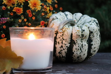 Background for autumn, Halloween, Thanksgiving, seasonal display, concept, with a place for an inscription