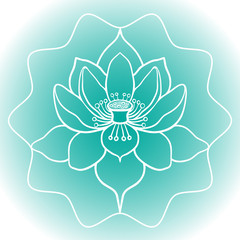 Schematic picture of flower lotus in blossom vector illustration