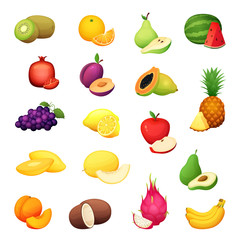 Fruit set. Cartoon vector illustration of colorful design fresh farm harvest.