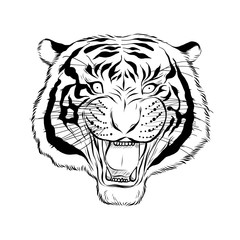 Hand drawn head of tiger, Vectorial isolated elements vector illustration Henna Mandala Zentangle stylized for Cover book or card, tattoo more. Design for spiritual relaxation for adults.