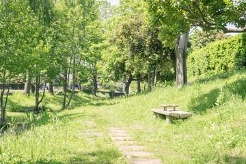 ベンチのある風景 源兵衛川緑地