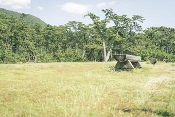 ベンチのある風景 沼津御用邸記念公園