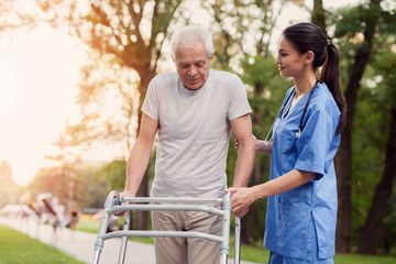 The old man walks through the park with the help of adult walkers. The nurse supports him