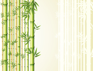 Bamboo background design with golden and green colors