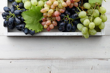 Various grapes with leaves in white wooden tray, autumn harvesting