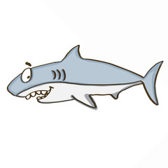 cute shark  and white background