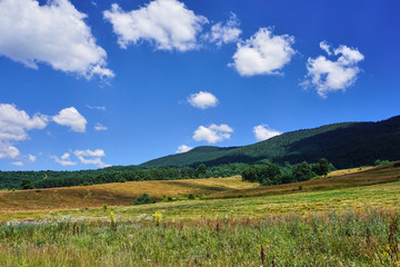 Rhodope Mountains in summer time
